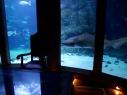 Captain Nemo's lair