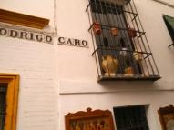 Back Streets, Seville